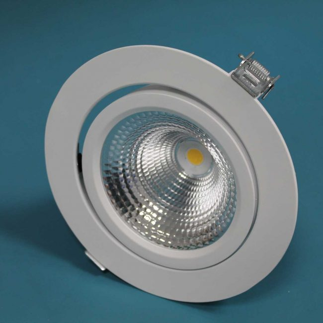 Zeta LED Directional Spotlight front view