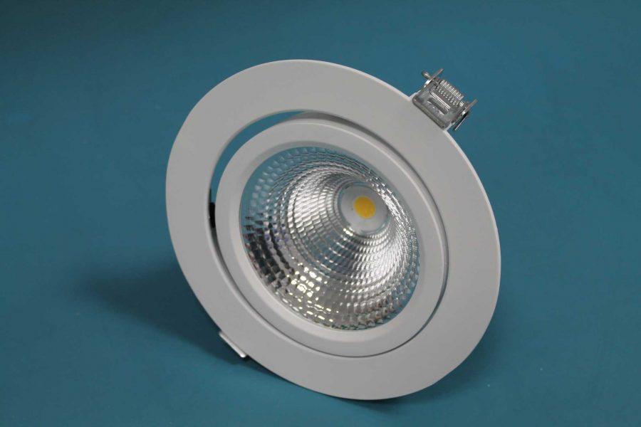 Zeta LED Directional Spotlight