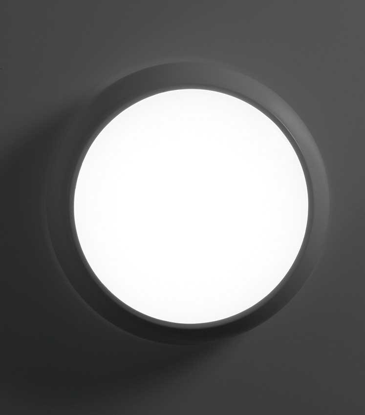 Zeta ZD LED Bulkhead
